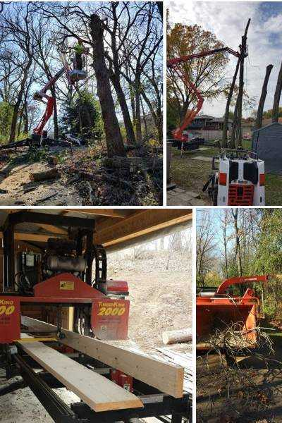 Tree Care and Wood Services